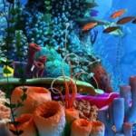 coral-clock_1